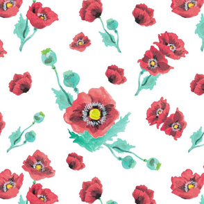Red Poppies in White