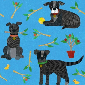 Dogs and Sticks