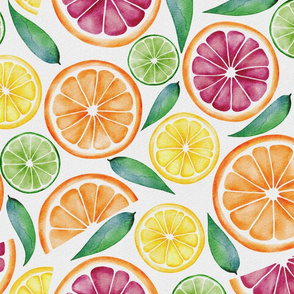 Watercolor Citrus Slices