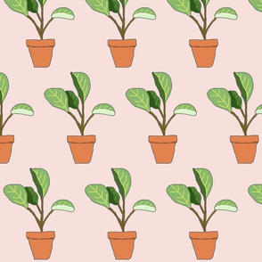 Potted Plant - Pink
