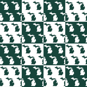Michigan State Cheater Quilt