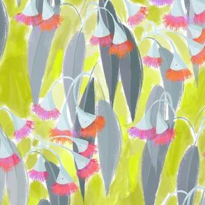 Pink Gum Blossom