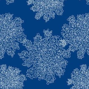 queen anne's lace v1.2