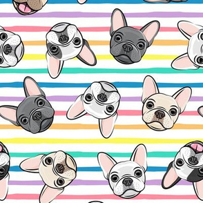 all the frenchies - French bulldog dog breed frenchie - toss on multi stripes rainbow - LAD19