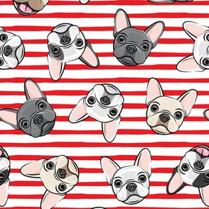 all the frenchies - French bulldog dog breed frenchie - toss on red stripes - LAD19
