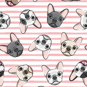 all the frenchies - French bulldog dog breed frenchie - toss on pink stripes - LAD19