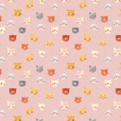 faces.cats.pink
