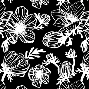 Inky Anemone in Black
