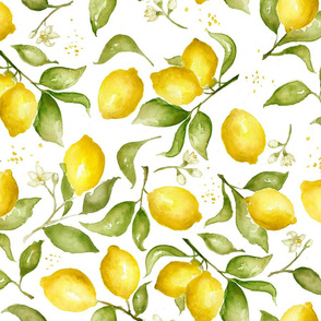 Lemon Blossoms, Medium