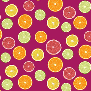 Citrus Slices -pink