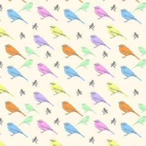 Pastel Shrike-Thrushes on cream, medium