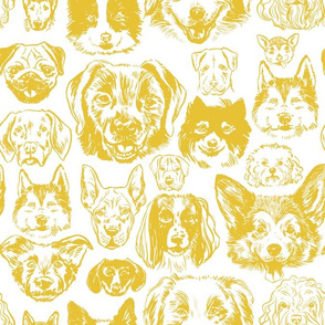 dogs - mustard