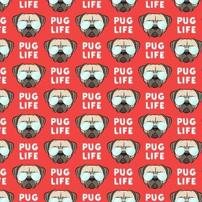 "(1"" scale) Pug Life - cute pug face - red w/ glasses C19BS"