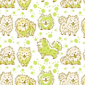 Fun Pomeranian (Green)