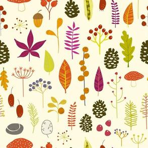 Autumn Forest  Nature Bits