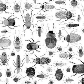Inky Beetles