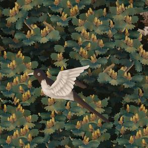 Autumn birds- forest