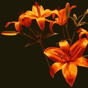 Orange Lily Paint by Numbers