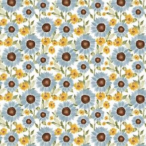 Sunflower Feilds 3x3