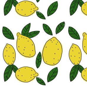 Lemons 2019