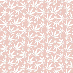 Cannabis leaves - white on petal pink