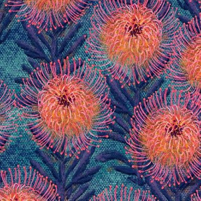 Pincushion Proteas on teal canvas 18""
