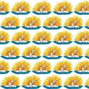 The Sun small r