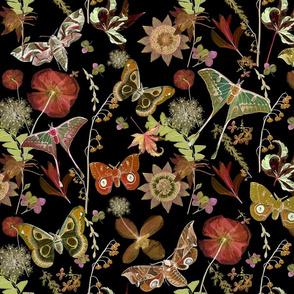 Moths Dark Floral Garden