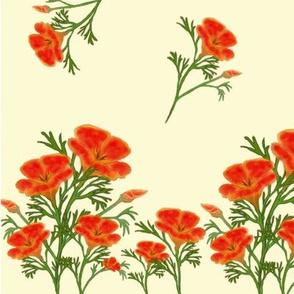 Farrah's Poppy Crop