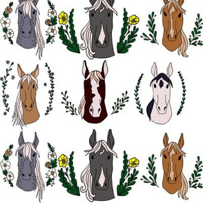 Horse Portraits Illustration