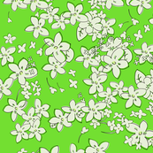 Show of Flowers (Lime) 40inch repeat, David Rose Designs