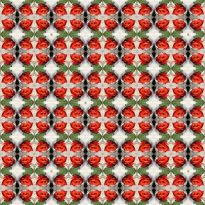 fire roses in ice white kaleidoscope small size