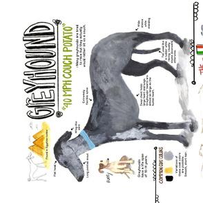 Greyhoundtowel