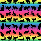 Cats on Rainbow