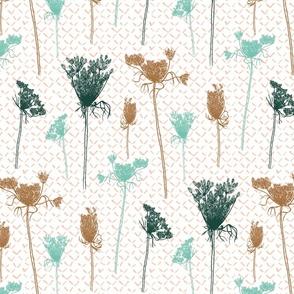 Hemlock |Conium maculatum| poisonous flower