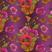 Poppies_Butterflies-PurpleOmbre