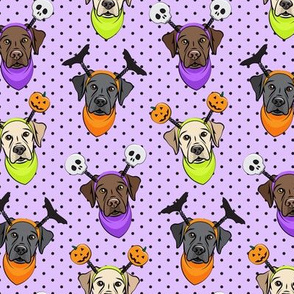 Halloween Labs - Labrador Retriever - Purple with polka dots - LAD19