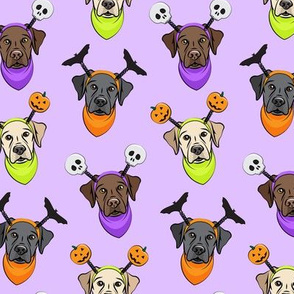 Halloween Labs - Labrador Retriever - Purple - LAD19