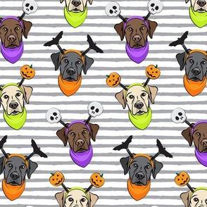 Halloween Labs - Labrador Retriever - Grey Stripes - LAD19
