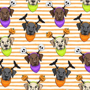 Halloween Labs - Labrador Retriever - Orange Stripes - LAD19
