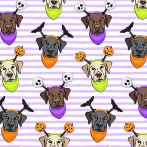 Halloween Labs - Labrador Retriever - Purple Stripes - LAD19
