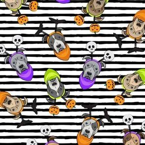 Halloween Pitties - Pit Bull Terrier - black stripes - LAD19