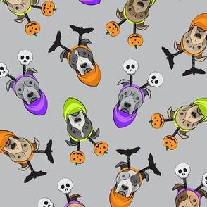Halloween Pitties - Pit Bull Terrier - grey - LAD19