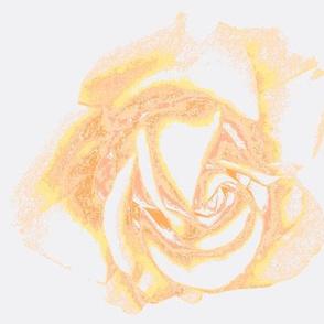 Fantasy Peach Roses