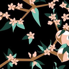 Peach Blossoms -LimitedColorPalette