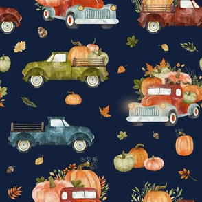 Pumpkin Farm // Stone Navy