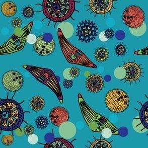 waterbugs-amoeba-layout3