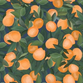 orange grove on navy