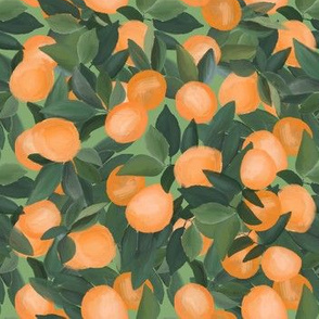 orange grove on light green
