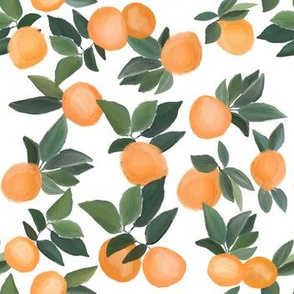 oranges scattered on white
